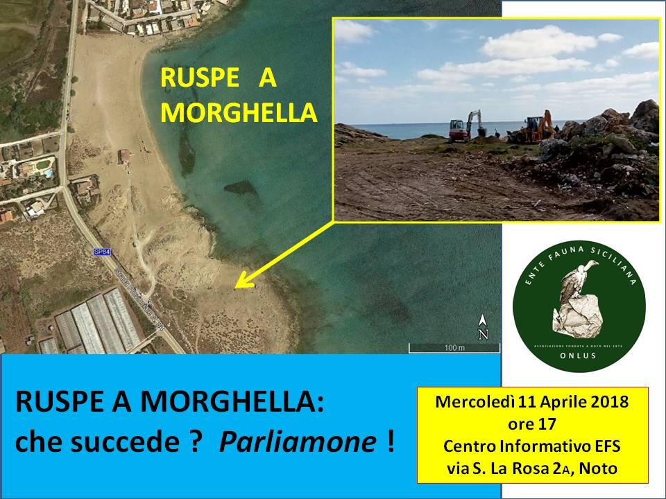 Conferenza su Morghella