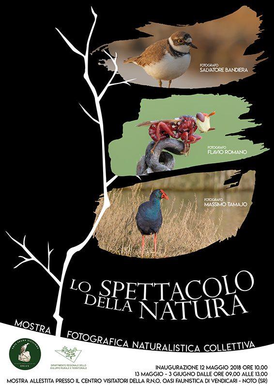 Mostra Fotografica Naturalistica, presso il Centro Visitatori della R.N.O. Oasi Faunistica di Vendicari (Noto)