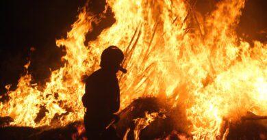 Incendi, analisi e proposte Ente Fauna Siciliana