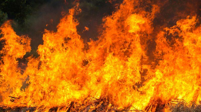 Gli incendi, una piaga sociale
