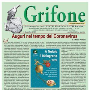 Grifone 156 anno XXIV n. 6